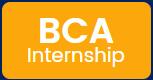 BCA Internship