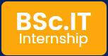 B.Sc IT Internship