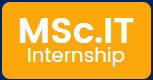 MCA Internship