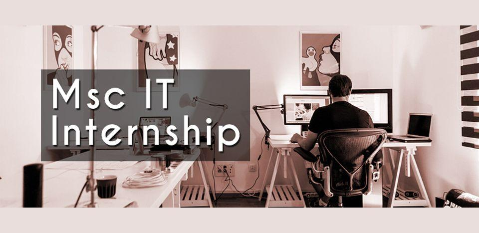 Msc IT internship